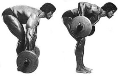 Arnold did barbell rows. Arnold had big pecs. Correlation = causation, right?