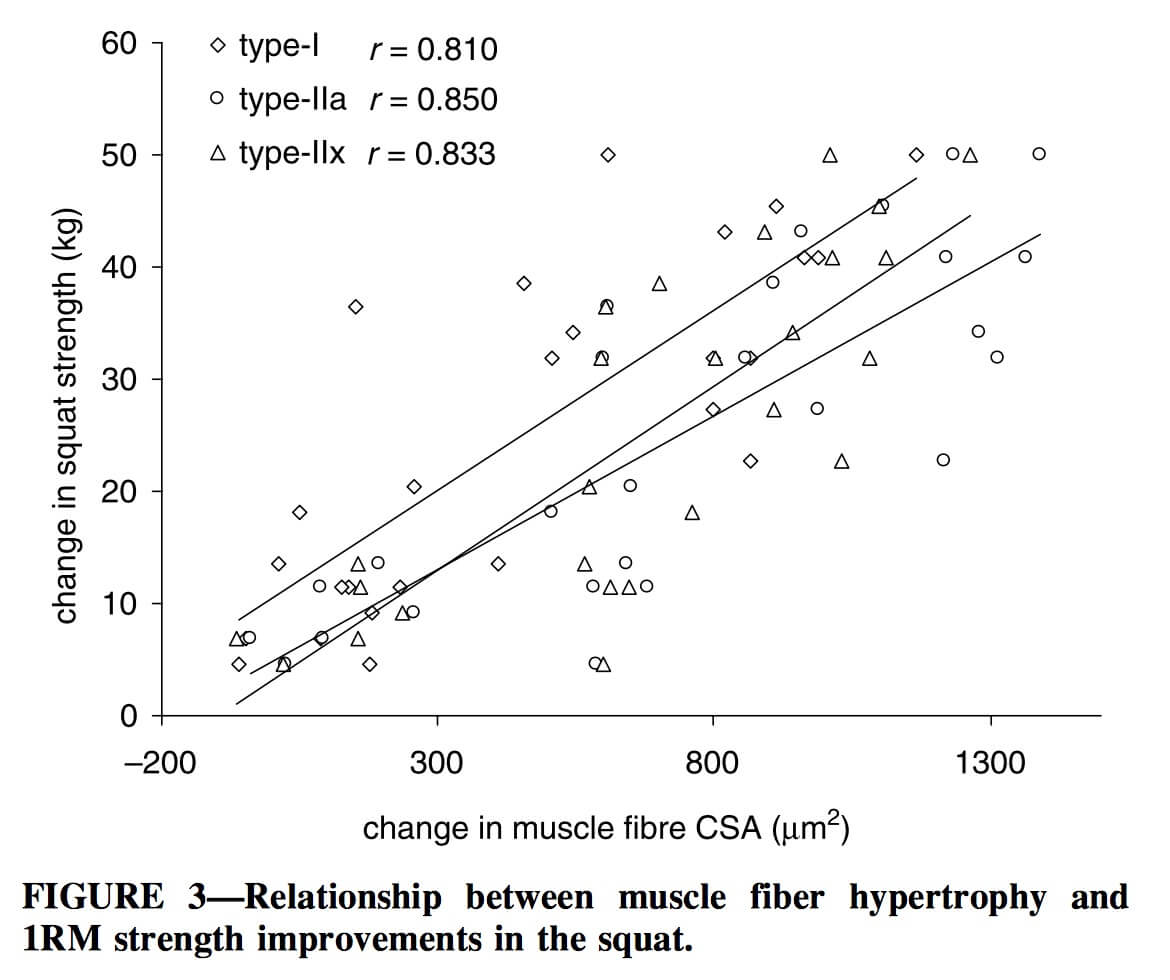 correlation between hypertrophy and strength